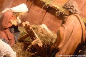 Spotkanie opłatkowe mieszkańców Radomia @ Katedra pw. Opiski NMP w Radomiu i Radomski Deptak | Radom | mazowieckie | Polska