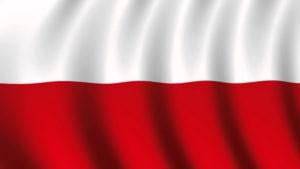 Ogólnopolska Konferencja Naukowa - W drodze do Niepodległej... @ Biblioteka Miejska w Radomiu | Radom | Polska